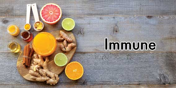 View our Supplements for Immunity